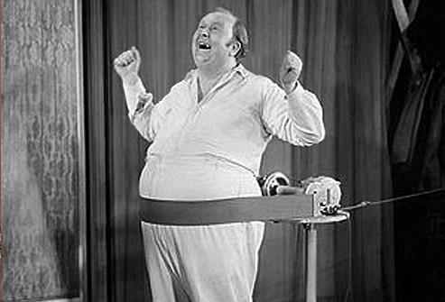 fat belt